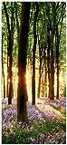 posterdepot Türtapete Türposter Blaue Hasenglöckchen im Wald mit Sonnenstrahlen - Größe 93 x 205 cm, 1 Stück, ktt0565