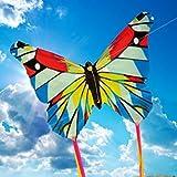 Brookite 3316,farfalla, mini aquilone, multicolore