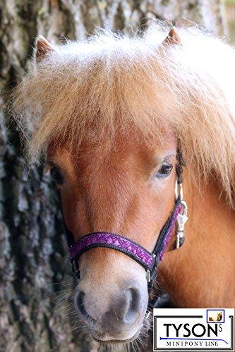 Fancy Glitzer Halfter Lila Glitzerhalfter Minishetty Shetty Pony VB WB Bling Nylon Halfter Tysons ! (Minishetty)