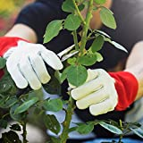 NoCry dornensichere und stichfeste Gartenhandschuhe aus Leder mit extra langem Unterarm-Schaft, verstärkten Handflächen und Fingerspitzen, Größe L, 1 Paar Test