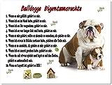Blechschild / Warnschild / Türschild - Aluminium - 15x20cm 'Eigentumsrechte' Motiv: Englische Bulldogge (06)