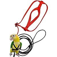 N/V Correa Pájaro, Anti-Bite Ajustable Arnés Y Correa, Cuerda De Tracción De Entrenamiento para Loros, Cacatúas, Guacamayos, Paloma Torcaz, Cotorras (Color Aleatorio)