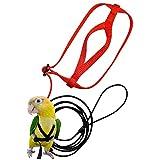 funnyfeng Oiseau Harnais Harnais et Laisse Réglables Formation Perroquet Fournitures d'oiseaux Corde en Nylon