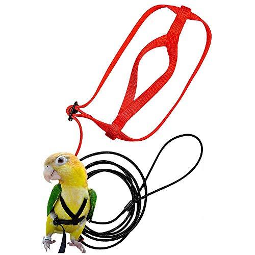 lossomly Imbracatura E Guinzaglio Regolabili Anti-Morso Morbido per Pappagalli Guinzaglio per Pappagallo Guinzaglio per Animali Uccelli di Pappagalli