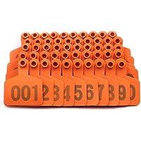 Farm & Ranch 001-100 - Etiquetas para orejas de ganado con diseño de vaca, color naranja