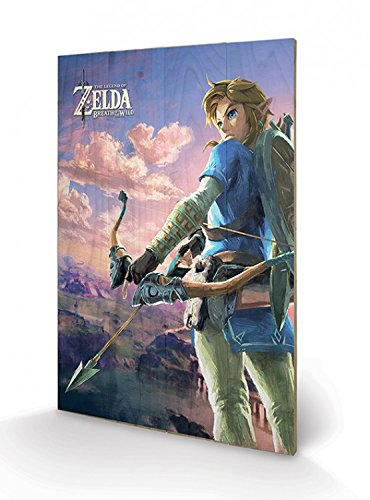 Preisvergleich Produktbild 1art1 102855 The Legend Of Zelda - Zelda Breath Of The Wild Hyrule Scene Poster Auf Holz 60 x 40 cm