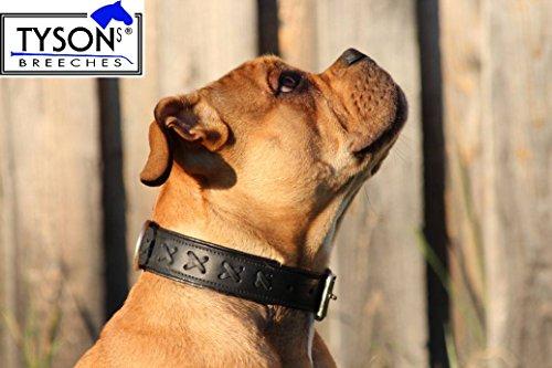 Leder Hundehalsband Halsband ZIERSTICH SCHWARZ sehr gr. Hunde Gr. XL 55 - 65 cm 6,0 cm Breit Lederhalsband (Breites Hundehalsband Schwarz)