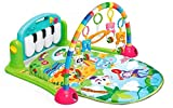Baby Play Gyms Review and Comparison