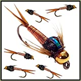 6 x Fliegen für Forellenfischen, Goldkopf-Nymphen 33 J; 6 x Copper Johns (hergestellt von unseren Praktiken), Hakengröße 12
