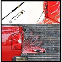 Ammortizzatore portellone posteriore aggiunta Ammortizzatore portellone posteriore FORD F150BJ: 04–12
