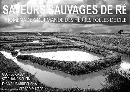 Saveurs sauvages de re de George Oxley,Diana Ubarrechena ,Stphane Schein ( 1 aot 2014 )