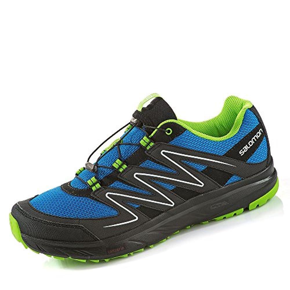 pretty nice 7c8d3 0123a Купить мужские кроссовки для бега по шоссе Salomon ✓ Salomon Herren ...