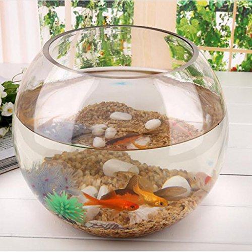 SM SunniMix Rund Transparenten Kristallglasschale Klar Kugel Vase Fisch Tank Behälter Wasserkrug -