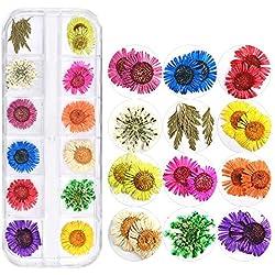 1 Unidades 3D Flores Secas Decoraciones de Arte de Uñas Flor de Pétalo Floral Floral Margarita Pegatinas Calcomanías DIY Manicura Consejos Lindos Calcomanía