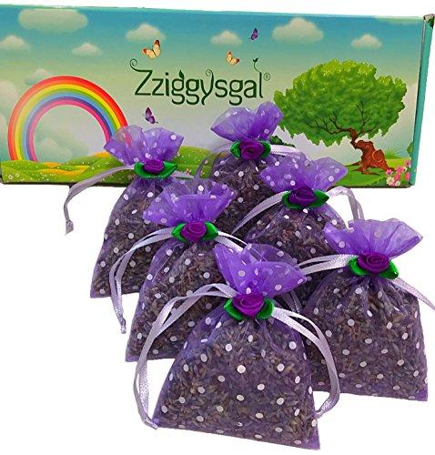 zziggysgal-french Lavendel Getrocknete Blumen–USA Gewand Bulk/Beuteln für Tee, Basteln und Geschenke. (Blumen Bulk Lavendel)