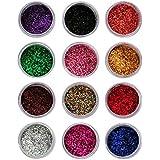 Vozwa Sparkling Nail Art Glitter Powder Set 12 Pcs (Multicolor) (a10)