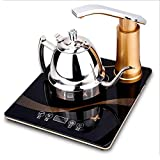 L@TX Temperature Control Kettle Electric Kettle Kettle Fast Boil, 1350 Watts, 1 Litre Capacity Stainless Steel , Silver