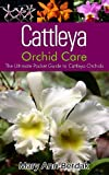 Cattleya Orchid Care: The Ultimate Pocket Guide to Cattleya Orchids