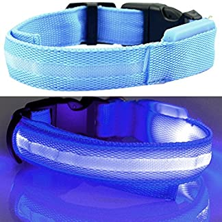Bodhi2000 Led Dog Collar Pet Safety Collars Water Resistant Dog Visibility Safety Adjustable Flashing Collar for Dogs… 13