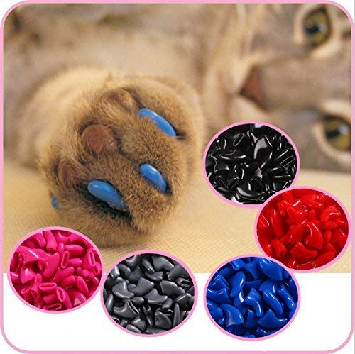 Imakar Krallenschutz für Katze, 20Stück, geliefert mit einer Tube Kleber und einem Präzisionsapplikator. Ungiftig und einfach zu verwenden. Krallenschutz für Katzen, ideale Lösung zum Schuz Ihrer Möbel
