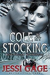 Cole in My Stocking (Blue Collar Boyfriends Book 3)