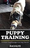 Puppy Training: Training & Handling Aggressive Dog Chewers
