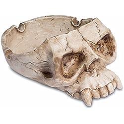 Gótico con cráneo de vampiro para decoración del hogar o regalo