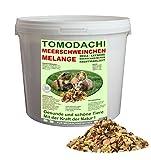 Meerschweinchenfutter, Nagerfutter pelletfrei, Naturfutter, Gemüse, Getreide, Kräuter, natürliche Nagerfuttermischung mit Möhrenflocken, Erbsenflocken, Erdnüssen, Sonnenblumenkernen, Kardi, Maisflocken, leckeres buntes Alleinfutter für Meerschweinchen, Rundum-Sorglos Futtermischung Tomodachi Meerschweinchen Melange 3kg Eimer