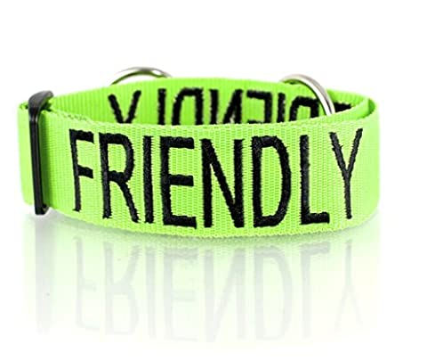 FRIENDLY (Known as Friendly to all) Green Colour Coded Wide L-XXL Semi-Choke Dog Collar PREVENTS Accidents By Warning Others Of Your Dog In Advance