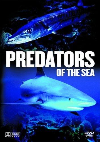 predators-of-the-sea-dvd