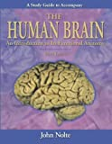 Study Guide to Accompany The Human Brain: An Introduction to Its Functional Anatomy (Human Brain: An: Written by John Nolte PhD, 2001 Edition, (5) Publisher: Mosby [Paperback]
