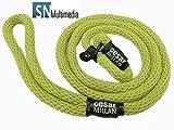 Hundeflüsterer Cesar Millan Leine Hundehalsband Illusion Collar Grün gewebte weiche