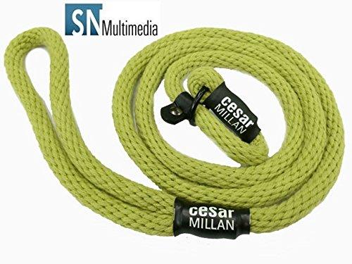 Hundeflüsterer Cesar Millan Leine Hundehalsband Illusion Collar Grün gewebte weiche Baumwolle