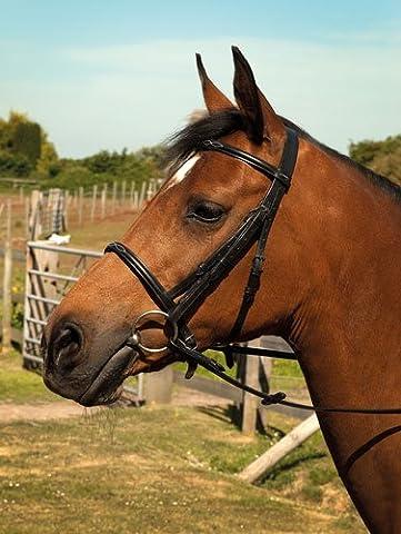 Heritage English Leather Horses Show Bridle