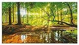Artland Design Spritzschutz Küche I Alu Küchenrückwand Herd Landschaften Wald Fotografie Grün H8HN Wald mit Bach