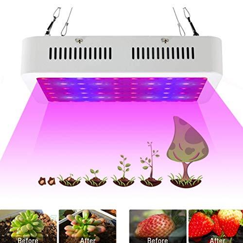 Full Spectrum Reflektor (ZMYLOVE Hydroponic Lights, 1000W Grow Light LED-Vollspektrum-Reflektor-Pflanzenlampe für Zelt & Gewächshaus, Rot & Blau, gemischt mit für Zimmerpflanzen und Gemüse)