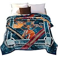 XDFCV Textiles,warmes Innenzubehör Thicken Raschel Decke Double Layer Winter Nickerchen Decke Single Double Hochzeit Decke Klimaanlage Decke