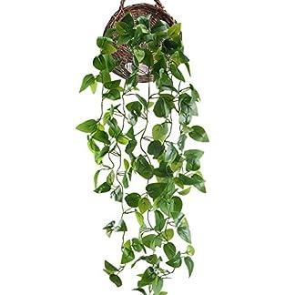 HUAESIN Enredaderas Artificiale 3.4 FT Hiedra Artificial pothos Exterior Simulación de Plantas Colgantes de Decoración para Pared Boda Jardin Cafetería