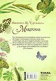 Image de Mariposas (Biblioteca De La Naturaleza)
