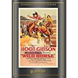 Wild Horse (1931) by Hoot Gibson
