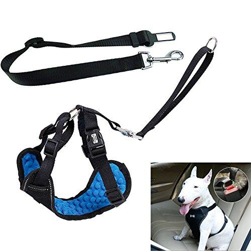 Einstellbare Hundewanne sicherer Weste Harness mit Hundegurt für Reisen und Walking, Massage Dots Design für Komfort und Atmungsaktivität (groß)