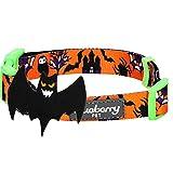 Blueberry Pet Feiertags-Halsbänder 2cm M Halloween Geheimnisvolle Tarnung Klassisches Designer Hundehalsband mit Abnehmbarer Deko