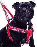 PRUDENCE Rouge codé couleur Nylon non-Pull Grand L-XL Harnais (Ne pas se approcher) prévient les accidents en avertissant les autres de votre chien à l'avance