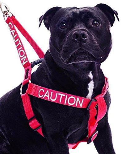 hundeinfo24.de VORSICHT Rot Farbe Coded Nylon L-XL Non-Pull-Hundegeschirr (Nicht-Ansatz) verhindert, dass Unfälle, die durch Warn Sonstige Ihren Hund im Voraus