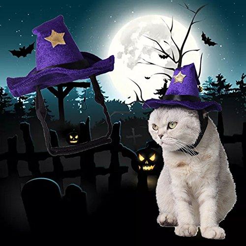 Star Eleven Haustiermütze für Katzen, Halloween, für Kleine Haustiere, Hamster, Katzen, Kaninchen, Kleine Hunde, Violett
