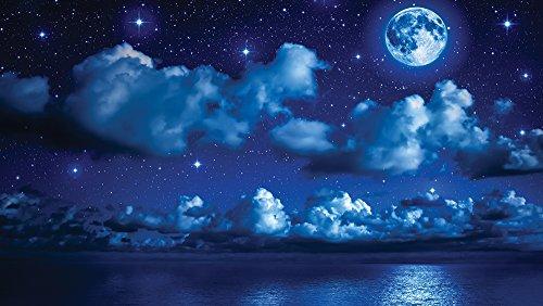 carta-da-parati-in-tessuto-non-tessuto-foto-wallpaper-carta-da-parati-foto-immagine-luna-notte-1731-