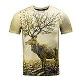 Rawdah T-Shirt à Col Rond Manches Courtes Impression Étoiles Chat Animaux Shirts Occasionnels Drôles D'Impression 3D Printemps Été à Supérieur Casual Top pour Hommes (M, G)