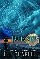 Burned: The TaP Team - a short story (English Edition)