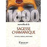 1000 merveilles de la sagesse chamanique