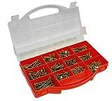 Connex DP8500085 - Estuche con tornillos surtidos (cabeza de Torx, cabeza avellanada, 900 unidades, galvanizados)